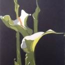 Arum Lilies I