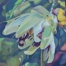 Passion Flower III