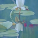 White Lily Reflected